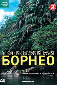 Смотрите онлайн Тропический рай Борнео