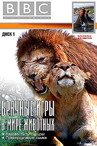 Смотрите онлайн Брачные игры в мире животных
