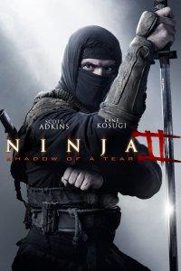 Постер к фильму Ниндзя 2
