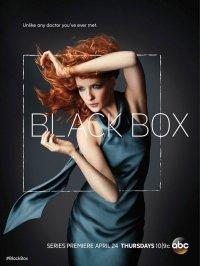 Смотрите онлайн Черный ящик