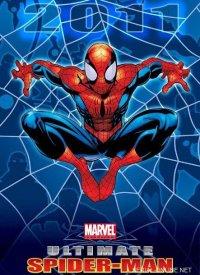 Постер к фильму Совершенный Человек-Паук