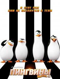 Постер к фильму Пингвины Мадагаскара