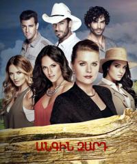Постер к фильму Angin zarde