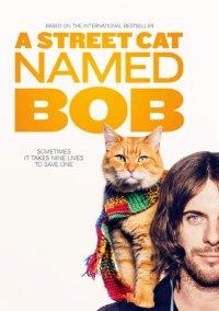 Смотрите онлайн Уличный кот по кличке Боб