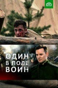 Постер к фильму Один в поле воин