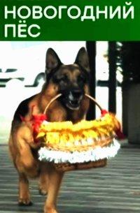 Смотрите онлайн Новогодний пес