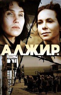 Постер к фильму Алжир